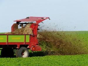 fertilize-62416_1280